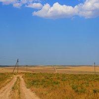 Казахстан :: Roman PETROV