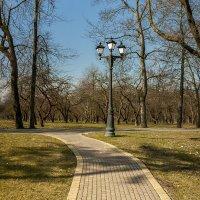 В весеннем парке :: Николай Климович
