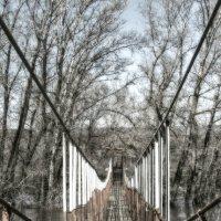 Подвесной мост через реку Большой Кинель :: Наталья Ильина