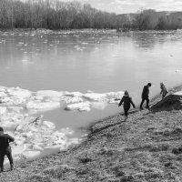 Какая радость этот ледоход. :: Валерий Михмель