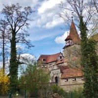 Посреди реки Пегниц замок Венцельсшлосс(Wenzelsschloss) :: backareva.irina Бакарева