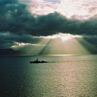 Солнечный дождь. :: Валерий Давыдов