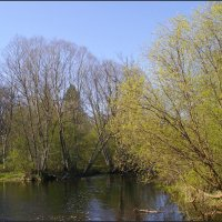 Весенний пейзаж :: lady v.ekaterina