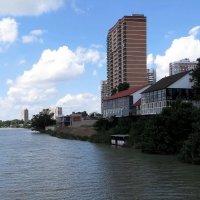 Река Кубань :: Татьяна Смоляниченко