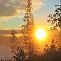 Вот и солнце выкатилось :: Сергей Чиняев