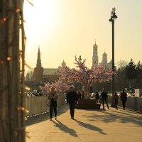 Москва весенняя :: ninell nikitina