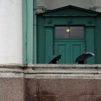 два зонта :: sv.kaschuk