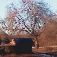 апрельское солнце :: павел бритшев