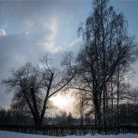 Зимний парк :: VL