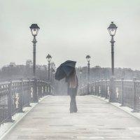 Туманной походкой :: Мария Буданова