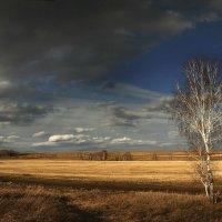 Весенние разливы :: Сергей Жуков