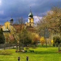 опять весна на белом свете... :: Elena Wymann