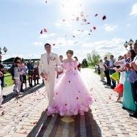 Свадьба Александр+Ольга :: Алексей Барган