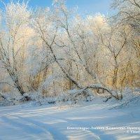 Мороз и солнце :: Яна Старковская