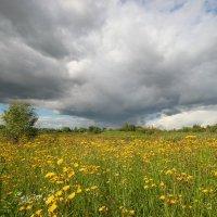 Облака над полем :: Екатерина Липатова