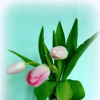 Цветы весны. :: nadyasilyuk Вознюк