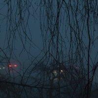 туман,вечер :: Олег