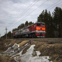 На Северной железной дороге. :: Андрей Дурапов