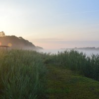 Рано утром на пруду. :: Виктор