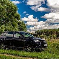 Toyota RAV4 :: Александр Горбунов