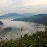 Утренний туман над долиной :: Сергей Чиняев