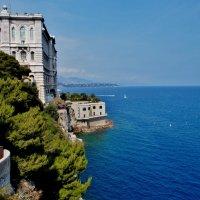 Океанографический музей Монако является одним из известнейших  учреждений во всем  мире... :: backareva.irina Бакарева