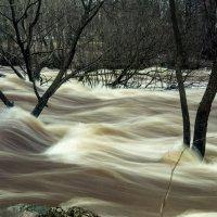 Быстрая вода :: Виталий