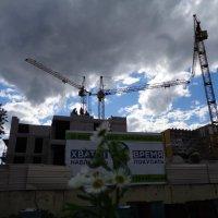 Краны наращивают высоту города :: Алекс Аро Аро