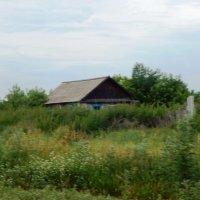 Заброшенные дома :: Нина