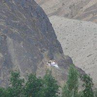 Тибетский монастырь :: Evgeni Pa