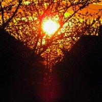 Апрельский закат :: mAri