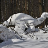 Парк мартовского периода :: Александр Юдин
