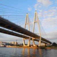 Большой Обуховский мост в Питере :: Надежда