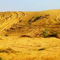 Пески, пески :: Raduzka (Надежда Веркина)