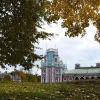 Осенний день :: Наталья Булыгина (NMK)