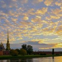 Питерское небо... :: Витас Бенета