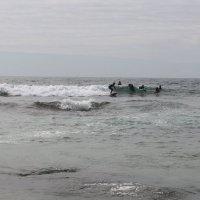 На гребне волны :: Ольга