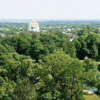 Вид со смотровой площадки Белой  башни. Екатерининский собор :: Елена Павлова (Смолова)