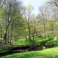 Парковый пейзаж :: Маргарита Батырева