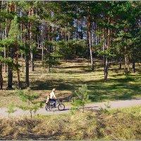 Вело-прогулка. :: Роланд Дубровский