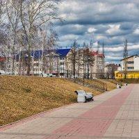 Холодный апрель в парке :: Любовь Потеряхина