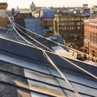 Крыши  Санкт-Петербурга :: Людмила Волдыкова