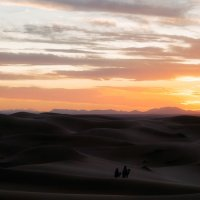 Закатная...Сахарские дюны близ Мерзуги.Марокко! :: Александр Вивчарик