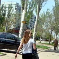 Решительным шагом :: Нина Корешкова