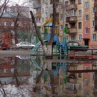 В город пришла весна. :: Елена Тренкеншу