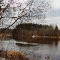 Река Лименда. :: Андрей Дурапов