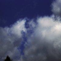 Грустное облако. :: Елена Kазак