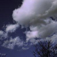 Облако в шапке. :: Елена Kазак