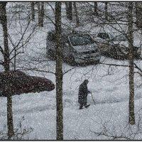 Снежный апрель. :: Валентин Кузьмин