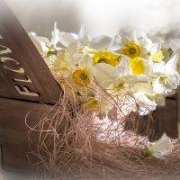 Посылочка от Весны... :: Bosanat
